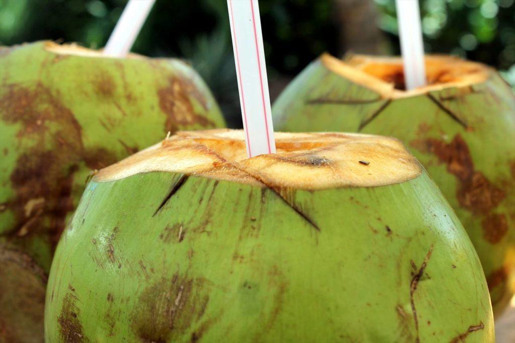 ココナッツの写真