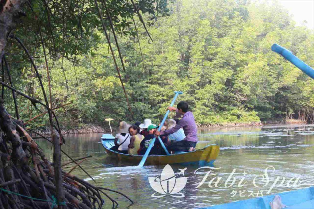 マングローブの森を周遊するボート