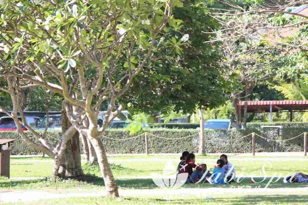シェムリアップの公園