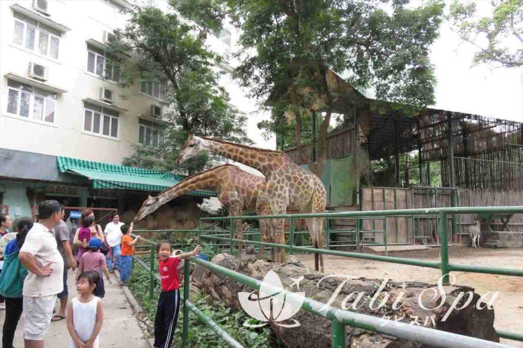 動植物公園