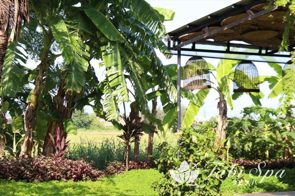 カームスパの庭園