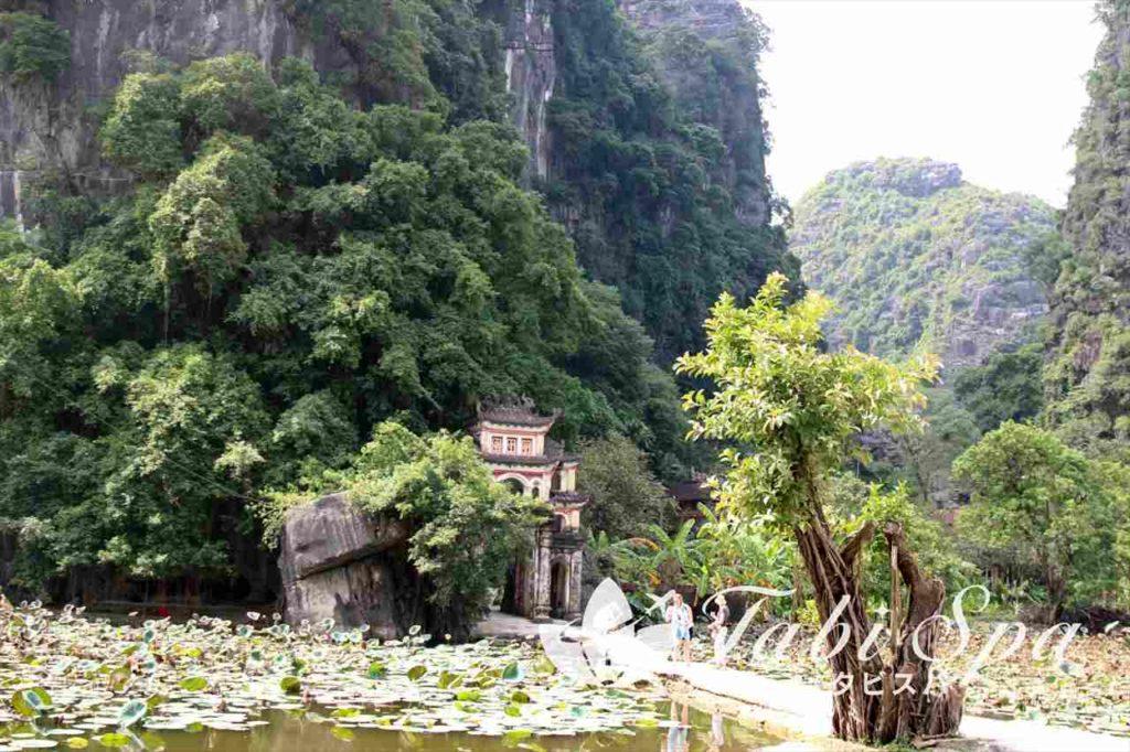 11世紀創建の由緒正しき寺「ビックドン寺(Bich Dong)」