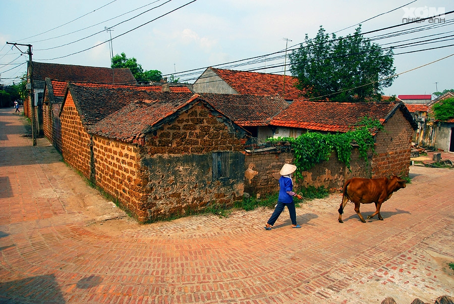 息を呑むほど美しい!ベトナムの農村「ドンラム」