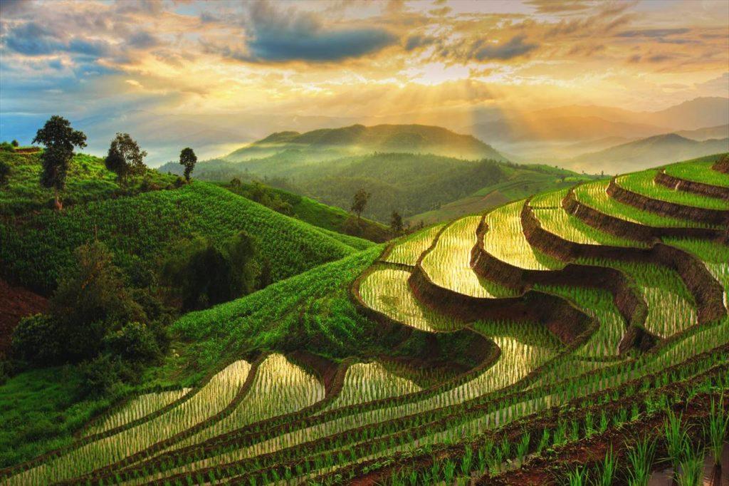 ベトナムで最も美しい棚田を見る「ホアンスーフィー」