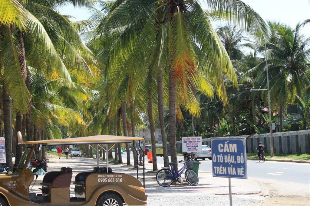ヤシの木が続くクアダイビーチ