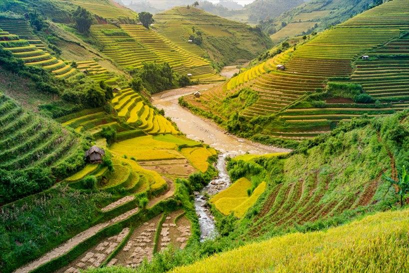 3.ディープなベトナム旅行を。サパの美しい棚田風景