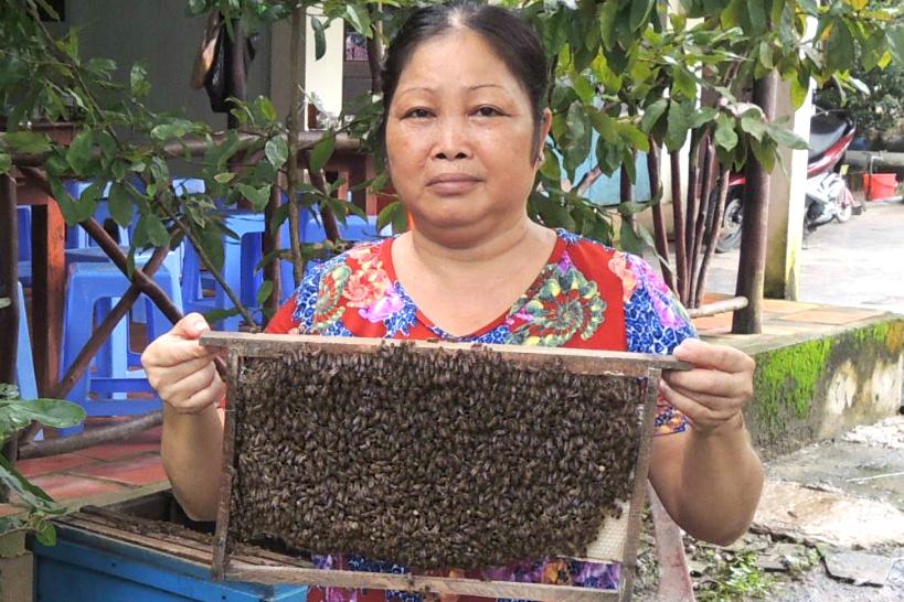 16:10 メコンデルタの隠れた名産品!蜂蜜農園の見学